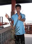 Ao Nang, Sea Food, Лобстер без 15 минут B.B.Q.
