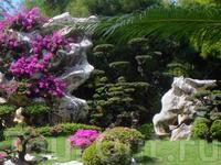 Сад миллионлетних камней - частная коллекция богатого тайца, который со всего света привозит огромные камни причудливых форм и необычные растения.....