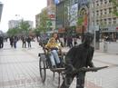 Тур в Китай с малышом