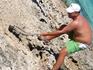 Ловим игуан на острове Игуан ( сори за тавтологию)