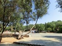 Здесь, в парке у подножья Акрополя начинается наш путь к его вершине.
