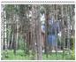 На этом месте была свалка строительных материалов и лес не вырубался. При активной поддержке отряда космонавтов и главы администрации Николая Рыбкина был ...