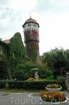Башня водолечебницы увитая плющом