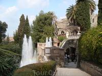 Дорожка, ведущая к главному фонтану парка