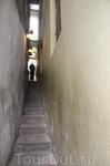 Самая узкая улочка))))) В действительности же просто проход между домами)))))