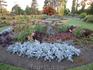 Queen's Elizabeth park, Vancouver