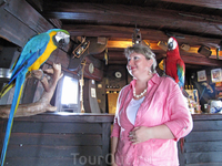Знакомлюсь с членами команды - попугаями Ара. Это девочка Лаура у меня на плече, очень ласковая оказалась.