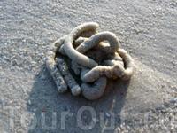 а это песочное творчество местных живностей :)) вдоль берега много таких кучек