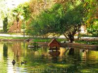 В небольшом водоеме, на берегу которого разместился домик, плавают утки. В общем, очень приятное место.