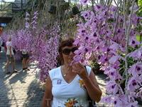 "Сад орхидей""Nong Nooch"""