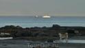 Белые кораблики на Белом море