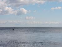 Ладожское озеро! Голубое и безмятежное!