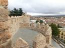 Остались записи о том, что под руководством мастеров Casandro Colonio и  Florín de Pituenga над строительством стены трудились от 1900 до 3000 рабочих ...