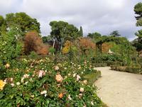 Идея создания розария пришла в голову главному садовнику парка Cecilio Rodríguez и была реализована в 1915 году. За образец для подражания взяли Булонский ...