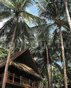 Фотография отеля Four Seasons Resort Koh Samui