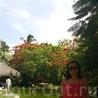 Отель Natura Park Beach Eco Resort на территории розовые фламинго