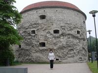 Толстая Берта(башня, а не моя жена:))