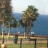 Нетания. Средиземное море