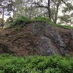 Отовсюду выпирают камни - просто готовые альпийские горки)