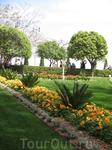 В садах все идеально. Очень чисто, ухожено и красиво.