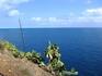 Море. Фотки делала с обзорной площадки у маяка города. Очень красивые виды