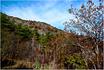 """Монастырь Сапара часто так же пишется """"Сафара"""" - монастырь в ахалцихском районе Самцхе-Джавахети, в 10  километрах от центра города Ахалцихе. Находится ..."""