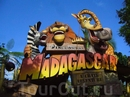 Аттракцион Мадагаскар.