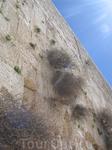 Стена Плача.