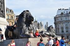 Величественный лев. (Трафальгарская площадь)