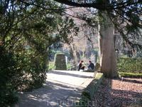 Ботанический сад прекрасен в любое время года, особенно когда светит солнышко.