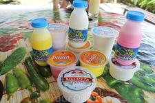 Из всего что купили понравилось молоко, простакваша. Очень понравилось мороженое и коктель из молока и манго. А вот йогурты и творог как-то не очень.
