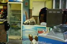 Очень голодный фуертовский мопс:)