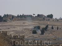 Вид на древнее еврейское кладбище со смотровой площадки Археологического парка Иерусалима.
