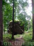 Лесопарковый массив парка характеризуется уникальными каменными грядами ледникового периода. Вот такие &quotкамушки&quot разбросаны по парку.