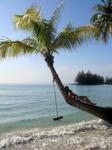 море, пальмы, качели...