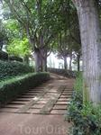 Уютные аллеи в садах...