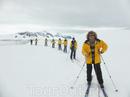 Новый год в Антарктиде. Рассказ Анастасии
