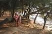 Хорватия/ п/о Веруделла. Море, сосны, скалы. Тихое уютное место.