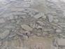 морские ежи на пляже не появляются, но рядом есть
