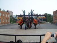 сафари парк шоу слонов