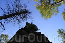 Олхинское плато.Осень