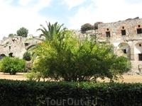 Пампеи, гранатовое дерево