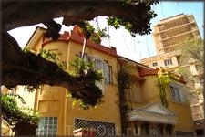 оригинальное дерево