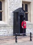 Охрана королевской резиденции