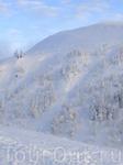 особые смельчаки уходили пешком в горы (проваливаясь в снег по колено а иногда и по пояс)...