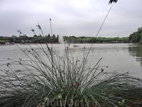 Посреди озера - большой фонтан.