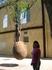 Не знаю кто придумал посадить дерево в камень и подвесить его, но смотрится оооочень эффектно!!!