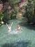 В бассейне Клеопатры