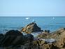 На пляже Феналс. Там и не только там в Ллорете есть где погулять, посмотреть, пофотографировать даже просто нам с нашими мыльницами ))