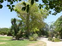 Мы в данный момент в Кибуце - Kibbutz Ein Gedi's tourism facilities, including: guest house, Eco tourism botanical garden and beach. Это официальное описание ...